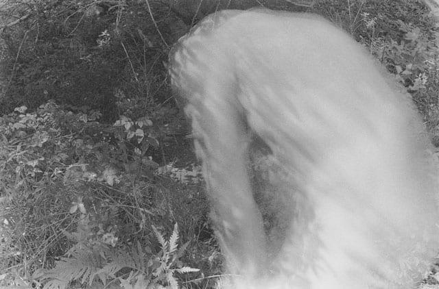 """""""אי הזבובים """"13x18 של הצלם שמחה שירמן -מוזיאון אשדוד לאמנות-3"""