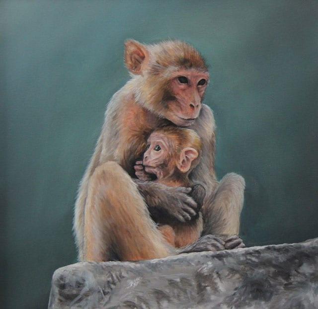 """מגזין אמנות, תערוכת יחיד """"בר"""" של האמן אופיר בוסקילה במוזיאון האדם והחי ברמת גן-1"""