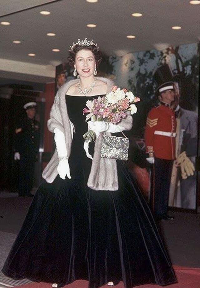 בצילום: מלכת אנגליה אליזבת בשמלת קטיפה. צילום: פינטרסט