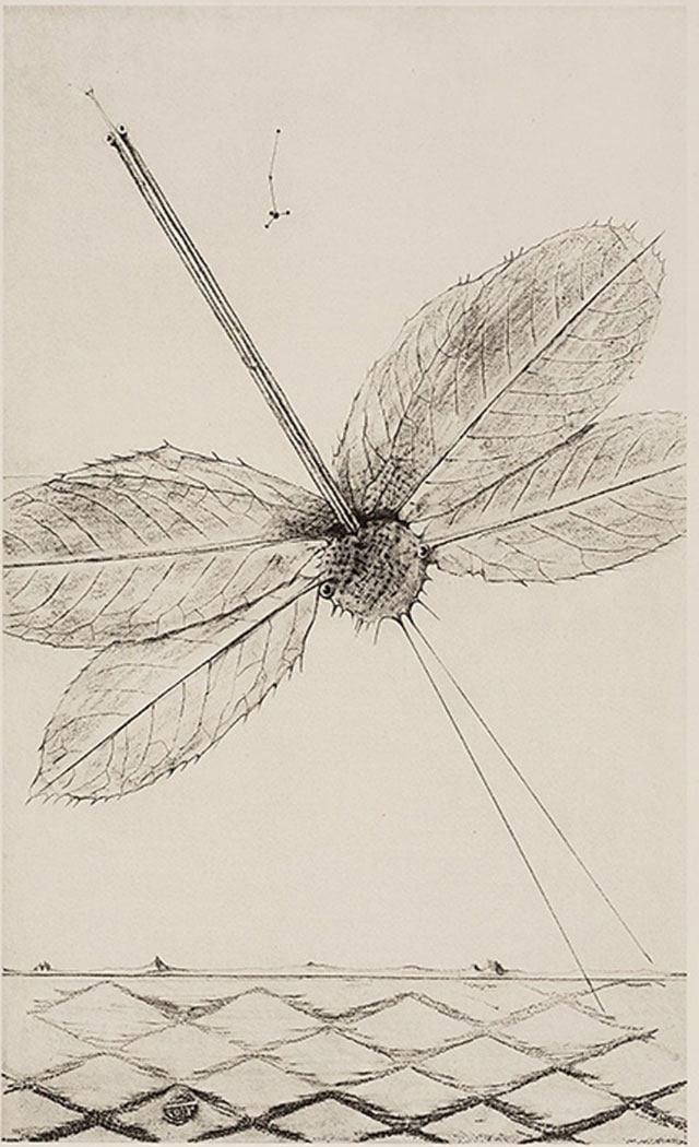 צורות חיות. תערוכה חדשה במוזיאון תל אביב לאמנות
