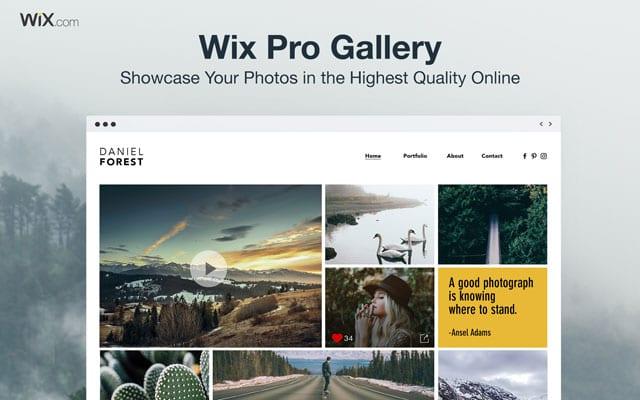 Pro Gallery-2